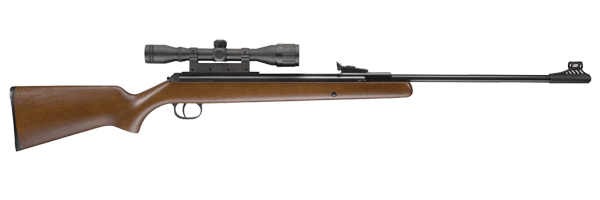 RWS .22 Pellet Model 34 Combo Rifle (Wood, Large)