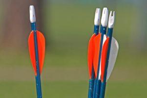 best compound bow arrows